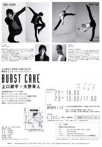 burstcake2